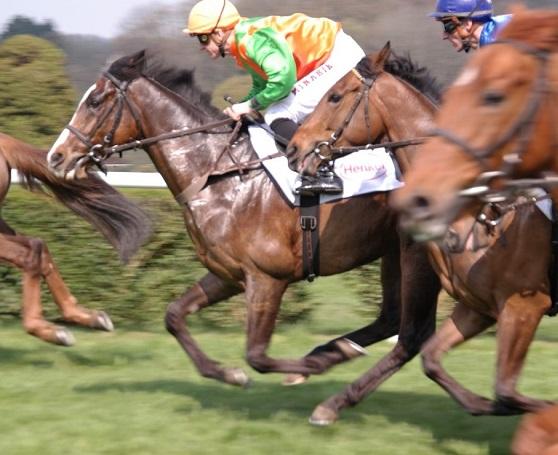 Having a Look at Horse Racing Betting